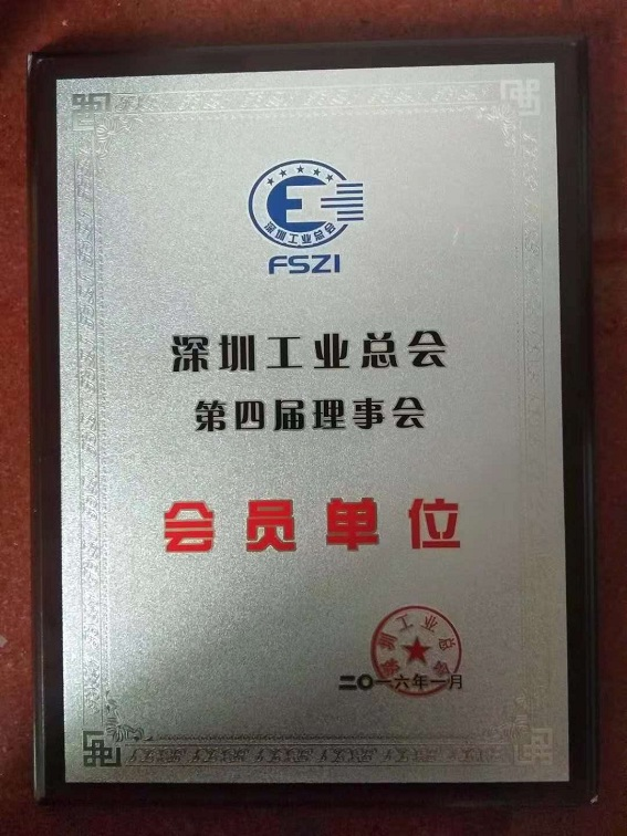 Shenzhen Federation of Industry Section 4 Council Member